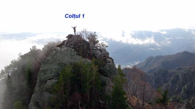 Coltii Foarfecii _blog 24