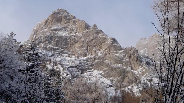 Galbinele sec iarna_blog 06