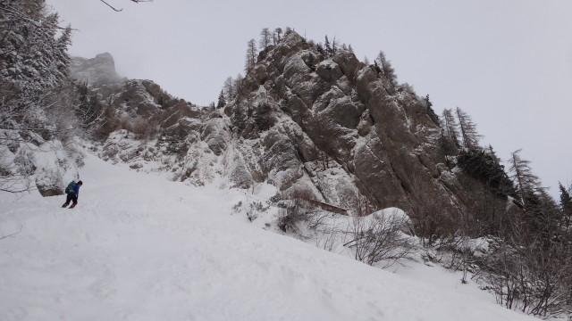 Galbinele sec iarna_blog 08