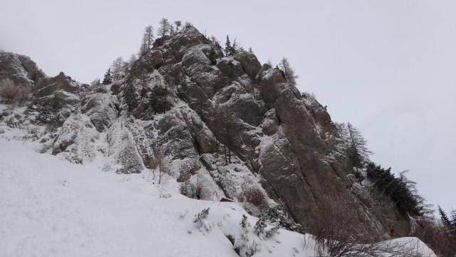 Galbinele sec iarna_blog 09
