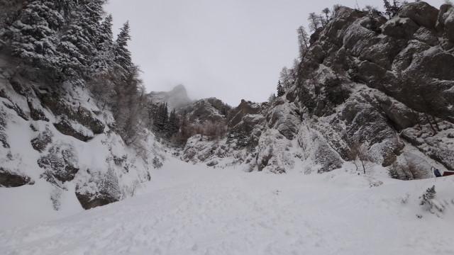 Galbinele sec iarna_blog 10