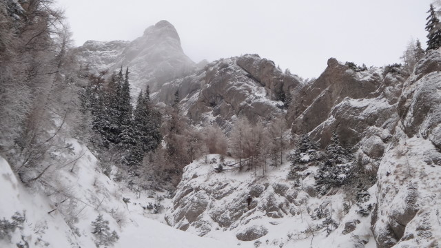 Galbinele sec iarna_blog 12