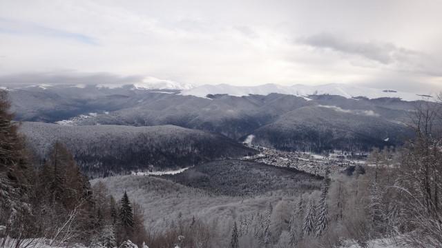 Galbinele sec iarna_blog 13
