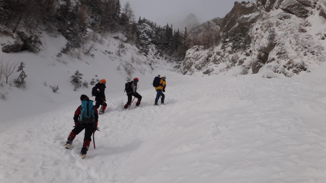Galbinele sec iarna_blog 16