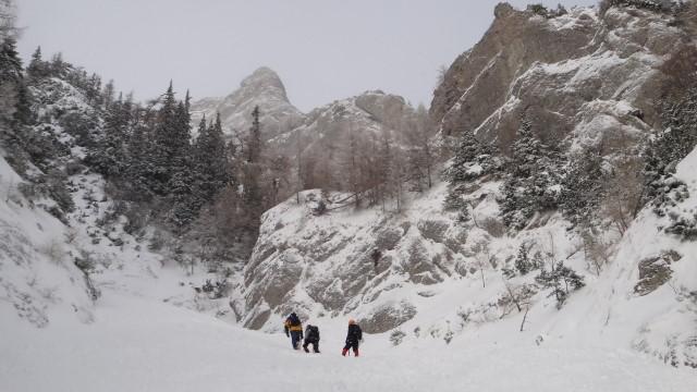 Galbinele sec iarna_blog 19