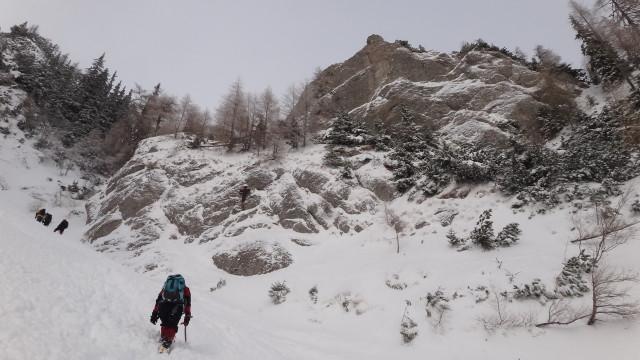 Galbinele sec iarna_blog 20