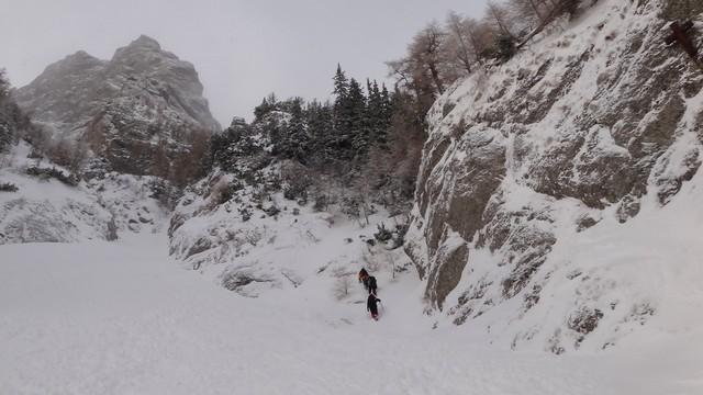 Galbinele sec iarna_blog 21