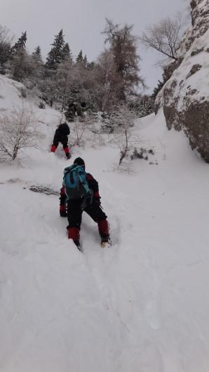 Galbinele sec iarna_blog 22