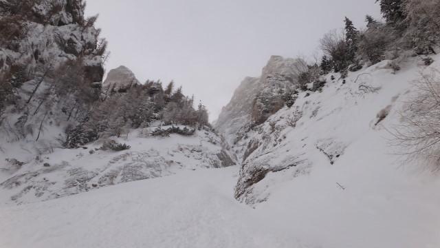 Galbinele sec iarna_blog 23