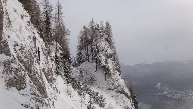 Galbinele sec iarna_blog 24