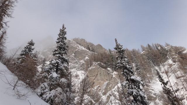 Galbinele sec iarna_blog 25