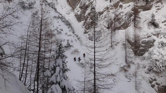Galbinele sec iarna_blog 26