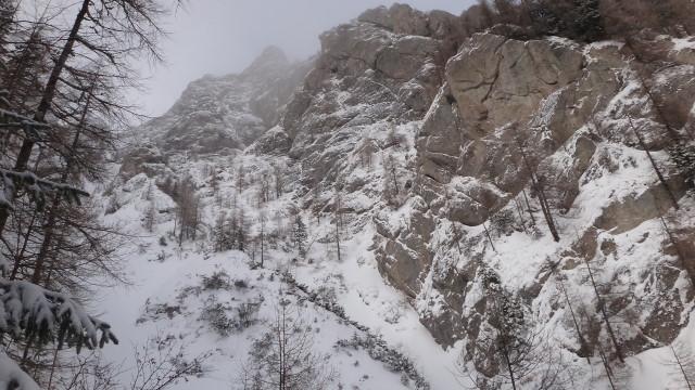 Galbinele sec iarna_blog 27