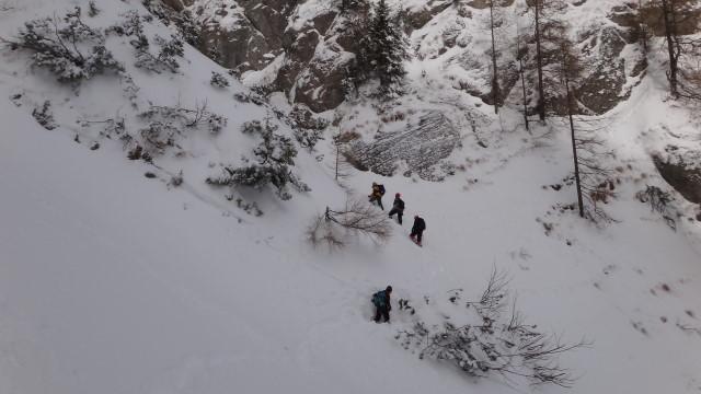 Galbinele sec iarna_blog 28