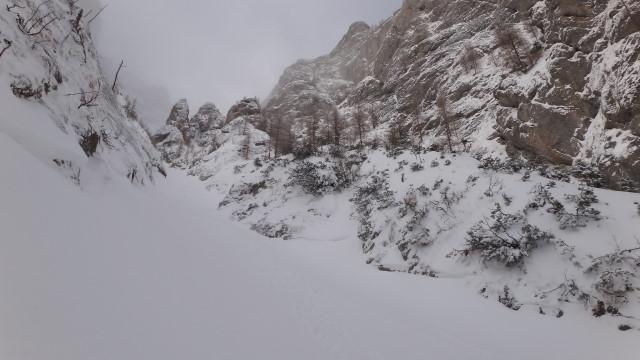 Galbinele sec iarna_blog 29