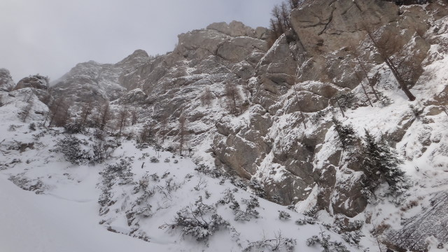 Galbinele sec iarna_blog 30