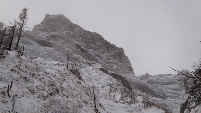Galbinele sec iarna_blog 31