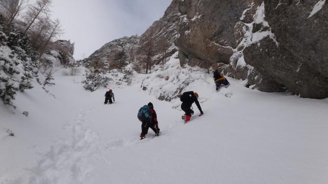 Galbinele sec iarna_blog 32