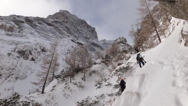 Galbinele sec iarna_blog 33