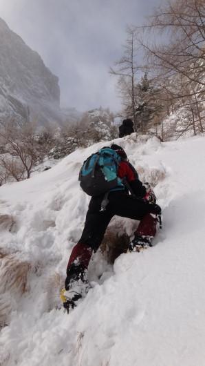 Galbinele sec iarna_blog 34