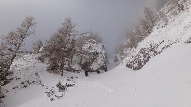 Galbinele sec iarna_blog 35