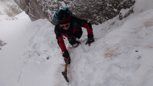 Galbinele sec iarna_blog 36