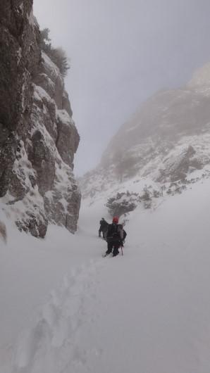 Galbinele sec iarna_blog 38