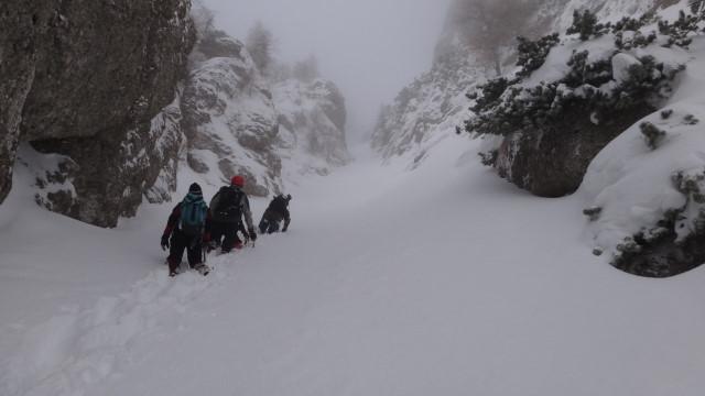 Galbinele sec iarna_blog 39