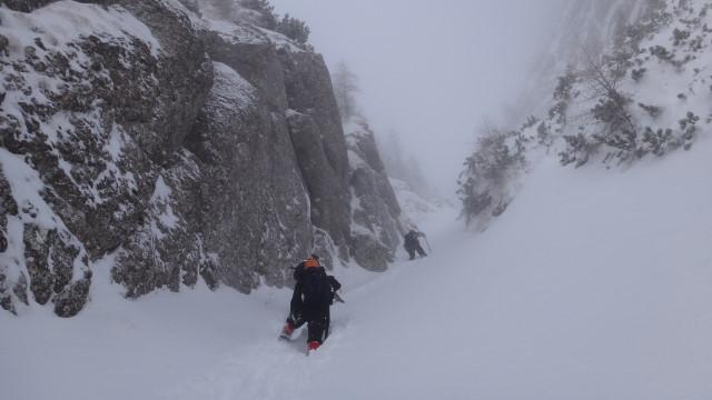 Galbinele sec iarna_blog 41