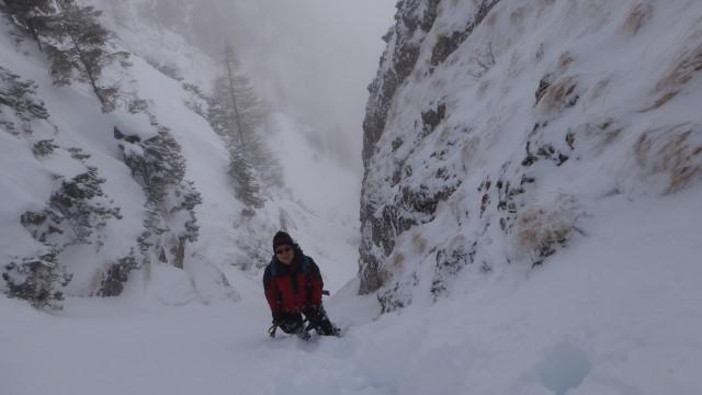 Galbinele sec iarna_blog 42