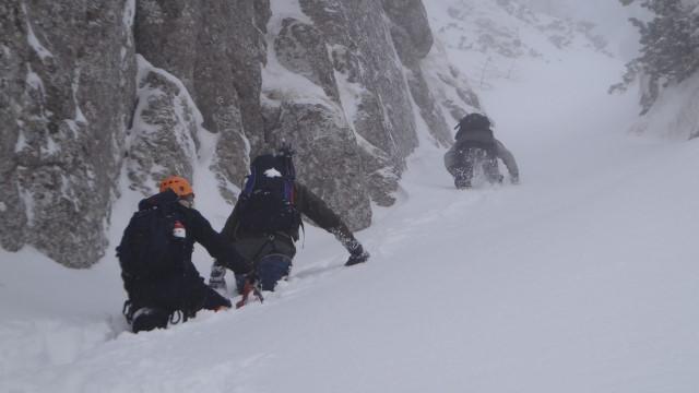 Galbinele sec iarna_blog 43