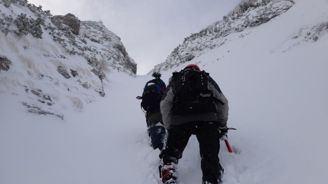 Galbinele sec iarna_blog 45