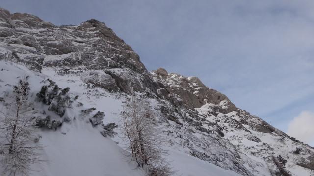 Galbinele sec iarna_blog 46