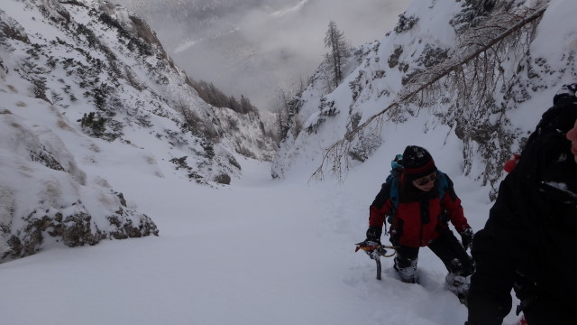 Galbinele sec iarna_blog 48