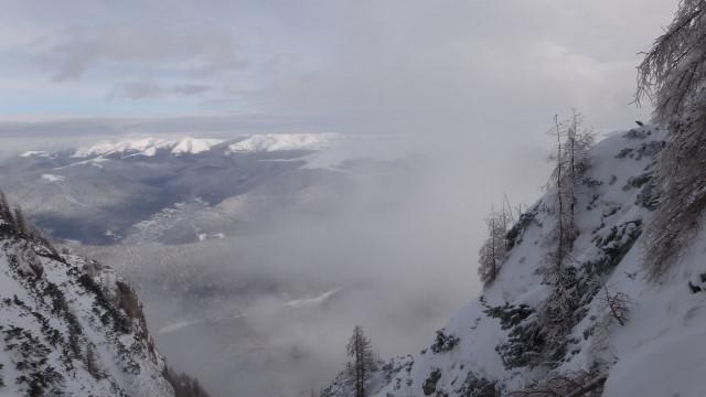 Galbinele sec iarna_blog 49