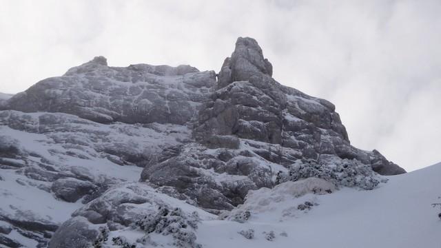 Galbinele sec iarna_blog 54