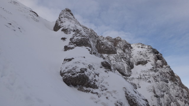 Galbinele sec iarna_blog 55