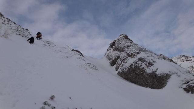 Galbinele sec iarna_blog 57