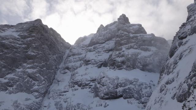Galbinele sec iarna_blog 63