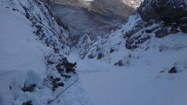 Galbinele sec iarna_blog 69