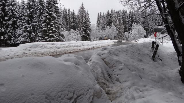 02_Cr Zaganu_Gropsoarele_iarna _blog