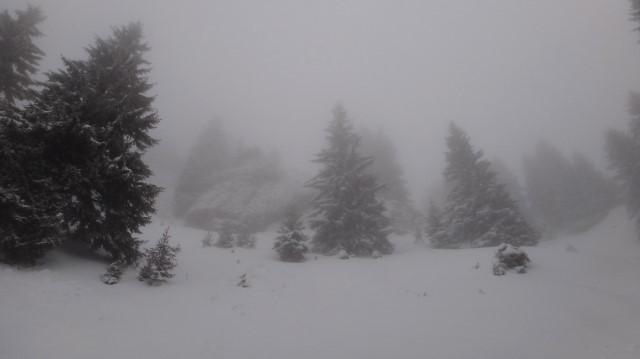 16_Cr Zaganu_Gropsoarele_iarna _blog