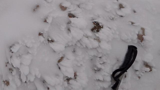 29_Cr Zaganu_Gropsoarele_iarna _blog