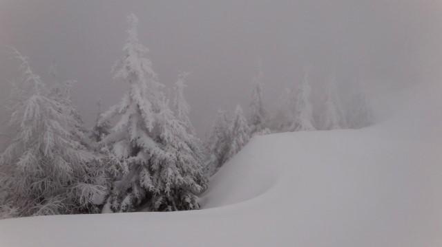 30_Cr Zaganu_Gropsoarele_iarna _blog