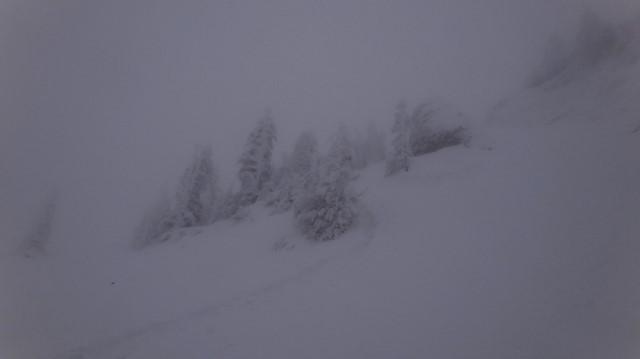 51_Cr Zaganu_Gropsoarele_iarna _blog