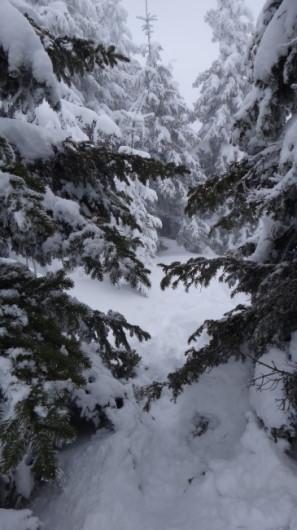 65_Cr Zaganu_Gropsoarele_iarna _blog