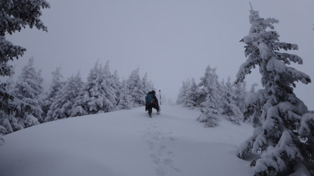 66_Cr Zaganu_Gropsoarele_iarna _blog