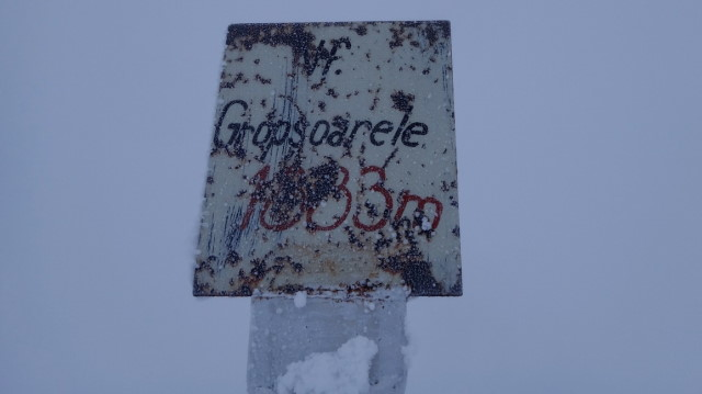 74_Cr Zaganu_Gropsoarele_iarna _blog
