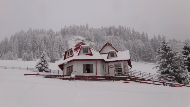 78_Cr Zaganu_Gropsoarele_iarna _blog