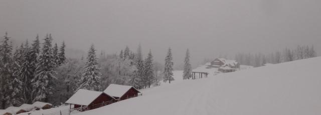 79_Cr Zaganu_Gropsoarele_iarna _blog
